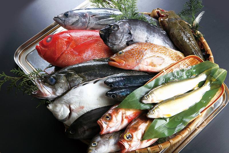 長崎県が全国1位の漁獲高(天然もの)を誇るお魚4種まとめ