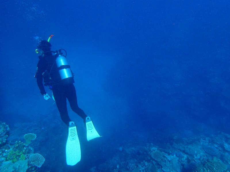 【長崎市】ダイビングに必要な器材レンタル料金3社比較