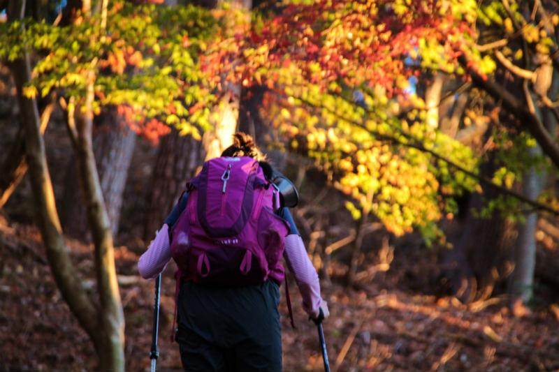 【シーズン到来】初心者でもOK!長崎市内のハイキング・登山おすすめスポット5選!
