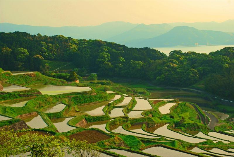 【日本の棚田百選】長崎県の絶景スポット棚田!6地区