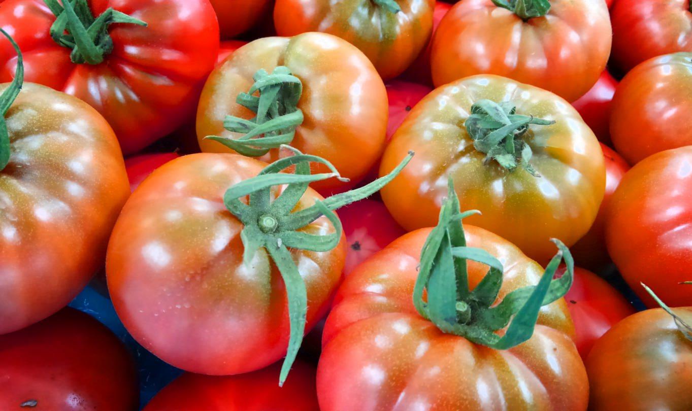 【いよいよ解禁!!】激甘♡で人気の高島トマトが2月から販売開始!!