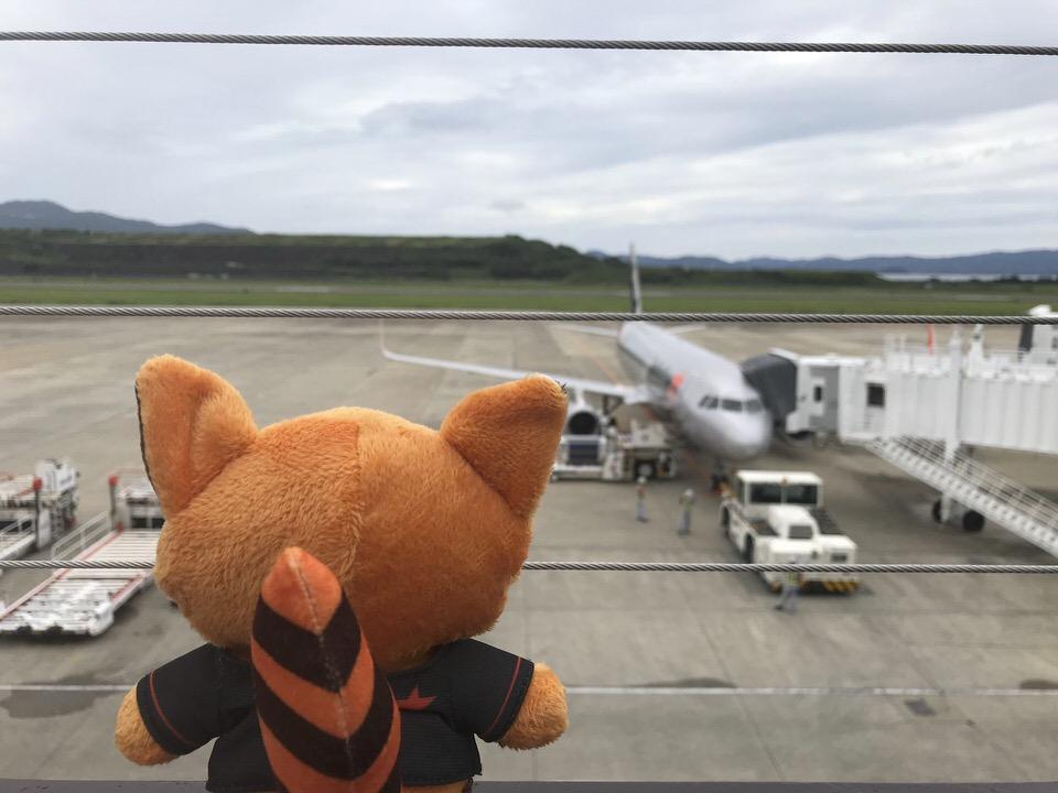 長崎から週末東京旅行♡就航したばかりのジェットスターで行ってきた!