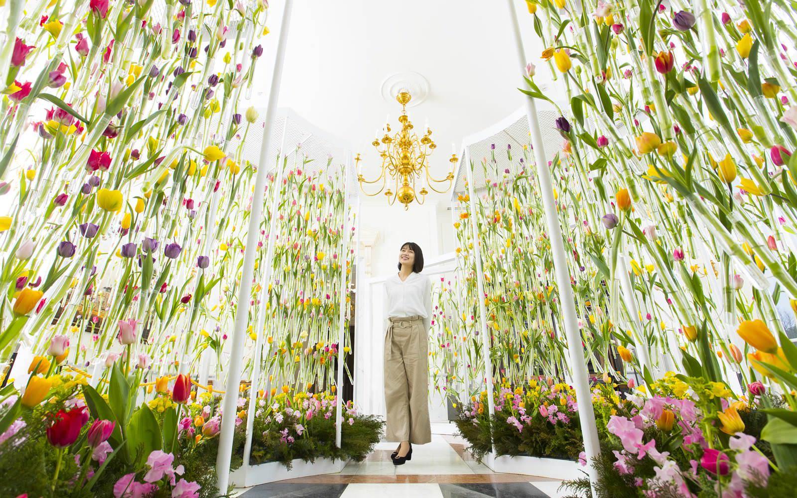 日本最多700品種100万本の「大チューリップ祭り」〜4.14sun